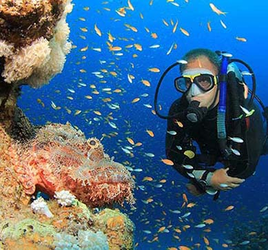 PADI ADVANCED COURSES